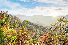 주천강자연휴양림